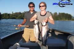 Pink-Salmon012