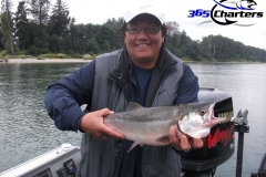 Pink-Salmon020