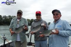 Pink-Salmon028