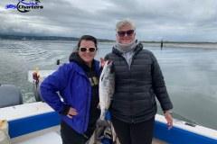 Puget Sound Summer Coho Salmon