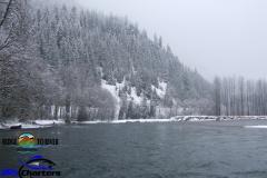 Skagit-River-Winter-Steelheading